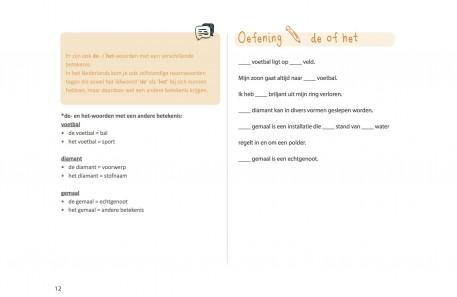 pagina 12 HET lidwoord